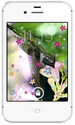 Colibri Exotic live wallpaper