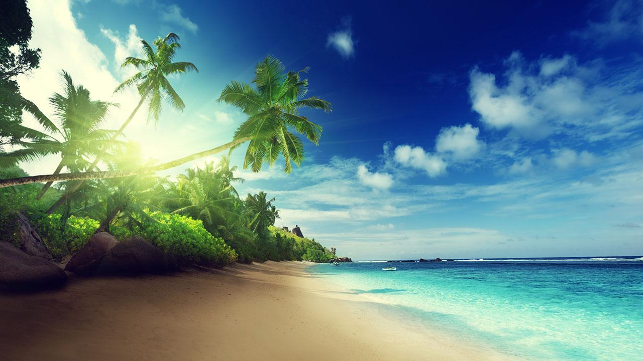 Beach Wallpaper Beach Live Wallpaper