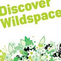 Discover Wildspace logo