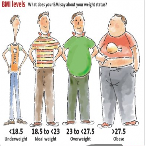 BMI Calories