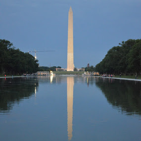 Washington Monument from Lincoln Reflecting Pond by Joana Gramajo - Buildings & Architecture Statues & Monuments