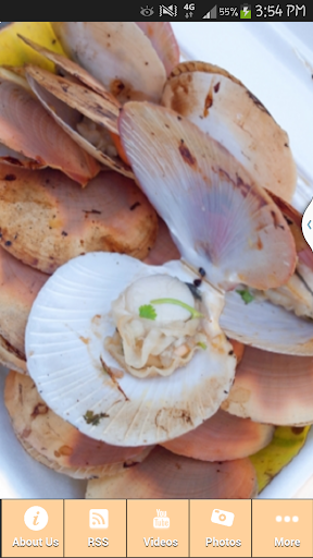 The Food Shellfish Recipes