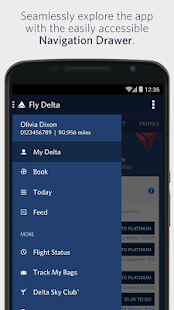 Fly Delta – Miniaturansicht des Screenshots