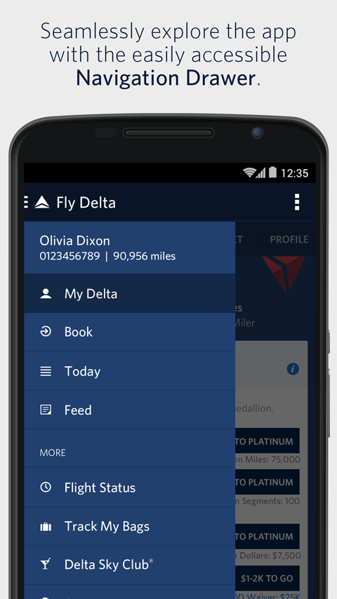 Fly Delta – Screenshot