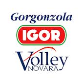 Igor Novara Volley