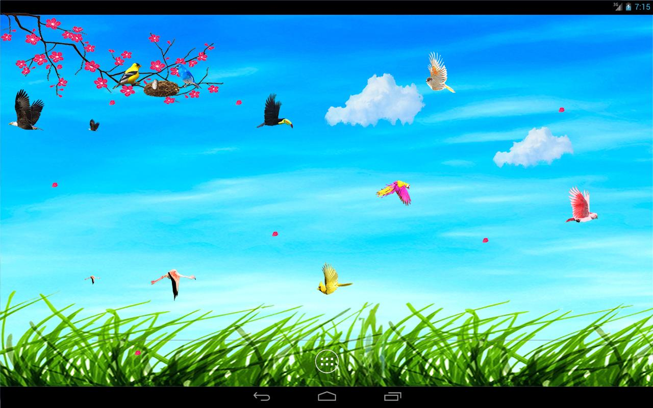 Sky Birds Live Wallpaper Android Apps On Google Play