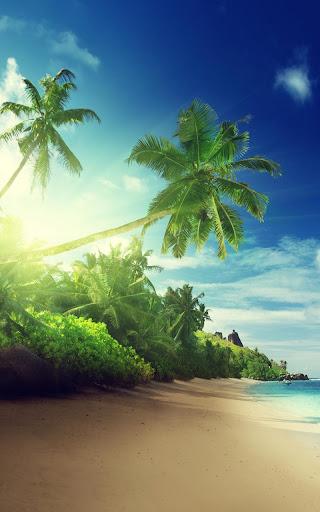 Tropical Beach Live Wallpaper 18.0 screenshots 4