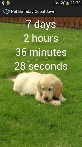 Pet Birthday Countdown