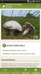 Fungipedia Lite- screenshot thumbnail