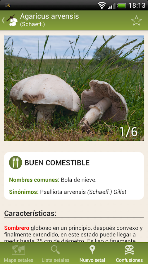 Fungipedia Lite- screenshot