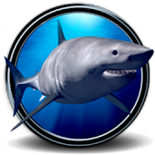 Great White Shark Real 3D