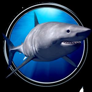 大白鯊3D 個人化 LOGO-玩APPs