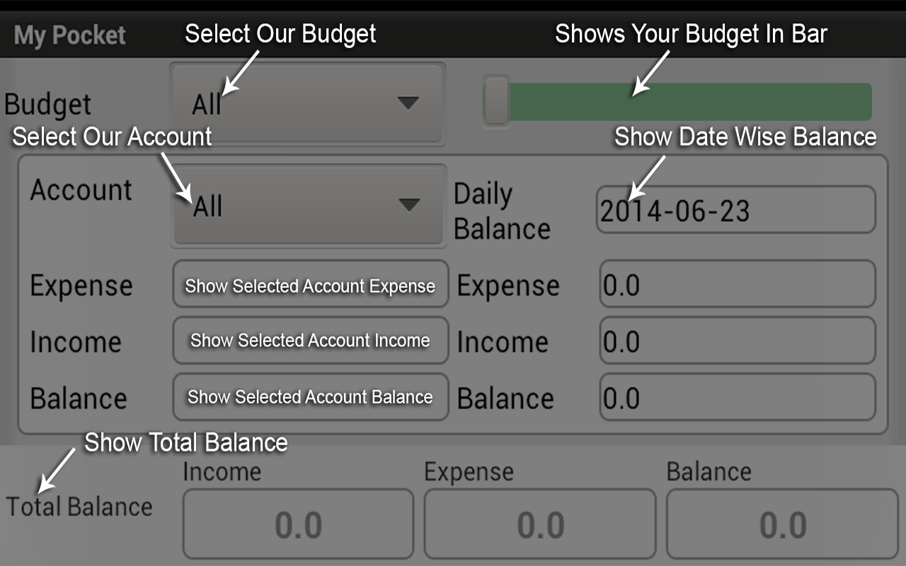 My Pocket - Expense Manager- screenshot