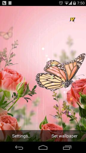 春天的花朵壁纸