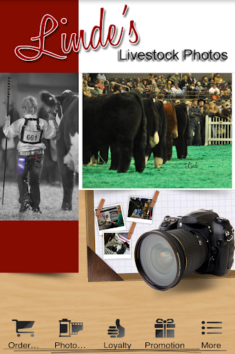Linde's Livestock Photography