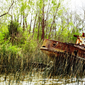 The Antiquated by Sandip Roy - Transportation Boats (  )