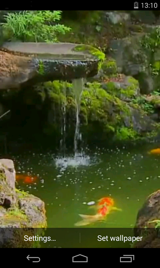Pond with koi live wallpaper android apps on google play for Koi pond app