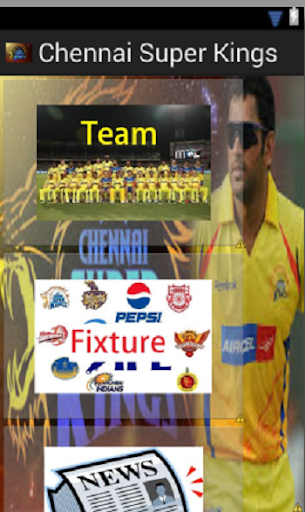 Chennai Super Kings 2014