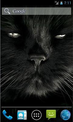 Black Live Wallpaper - screenshot
