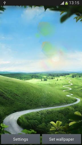 Dynamic Sun Grass Land