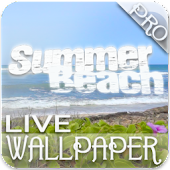 Summer Beach Waves Live WP Pro
