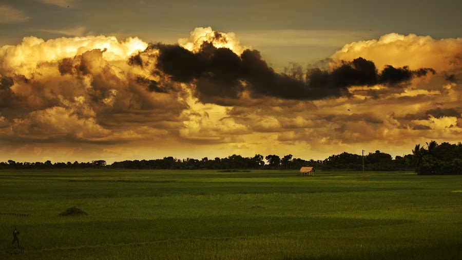 Burning Sky  by Abdullah Aal Mamun - Landscapes Cloud Formations ( countryside, skyline, colorful, cloudy, fields )