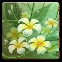 Flowers Memory HD icon