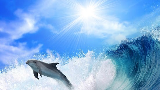 Dolphins Live Wallpaper- screenshot thumbnail