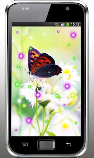 Butterfly Best live wallpaper