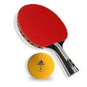 Table Tennis Quiz