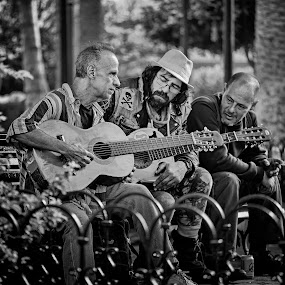 The Guitarist by Jay Gould - People Street & Candids ( music, 2014, tenerife, street, guitarist, people )