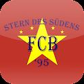 Stern des Südens '95 icon