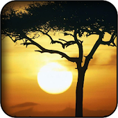 African Sunset Wallpapers