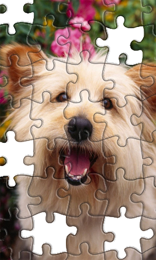 Jigsaw Puzzles Puppies