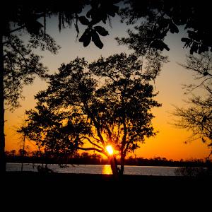 River Life Sunset.jpg