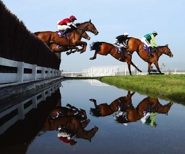 玩個人化App|3D Horse Racing Wallpaper免費|APP試玩