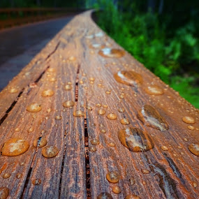 Raindrops on Wood by Judy Dean - Nature Up Close Water ( water, bead, wood, rail, drops, wet, puddle, rain,  )