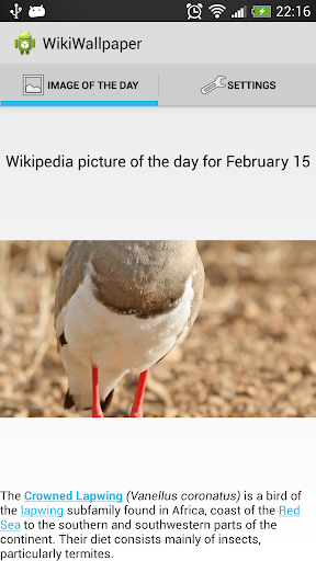 Wikipedia Wallpaper