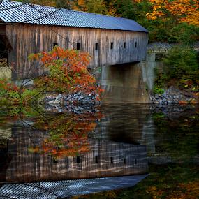 Covered Bridge by Janet Lyle - Buildings & Architecture Bridges & Suspended Structures ( autumn, fall, bridge )
