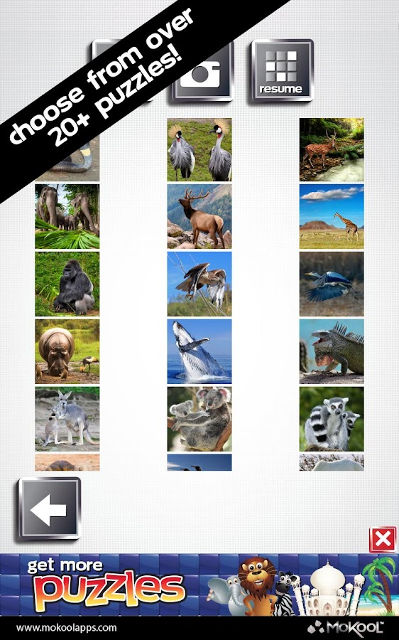 Animal Puzzles 25+ FREE Puzzle - screenshot