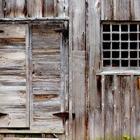 The Barn by Ronnie Caplan - Buildings & Architecture Decaying & Abandoned ( old, grass, door, delapidated, architecture, deserted, clasps, wooden, barn, window, panels, metal, antique,  )