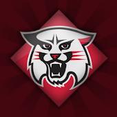 Davidson Wildcats