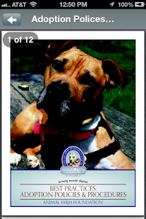 Talking Pit Bull Dogs with AFF- screenshot thumbnail