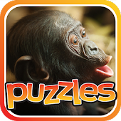 Monkey Puzzles - Free Game