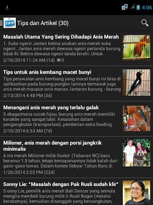 Burung Anis Merah - screenshot