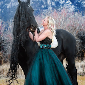 Bandito and His Beauty 1 by M Knight - Animals Horses ( girl, fresian horse, mane, horse, gown, long mane, beauty, black horse, black )