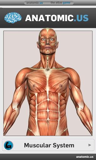 玩解謎App|肌肉解剖游戏免費|APP試玩