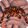 iSpider Monster Pals logo