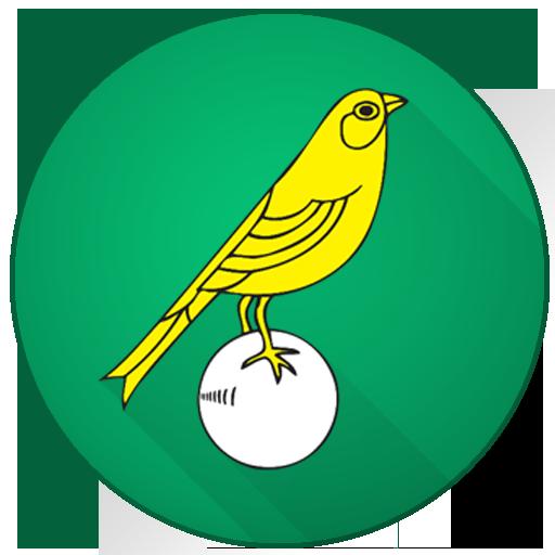 Norwich City Football News LOGO-APP點子