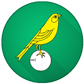 Norwich City Football News